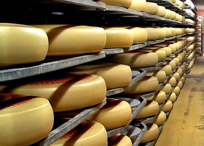 Le fromage suisse Emmental